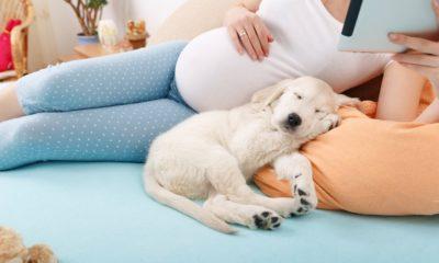 Лечение трещин у беременных женщин