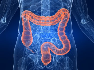 Что представляет собой гидроколоноскопия кишечника? фото